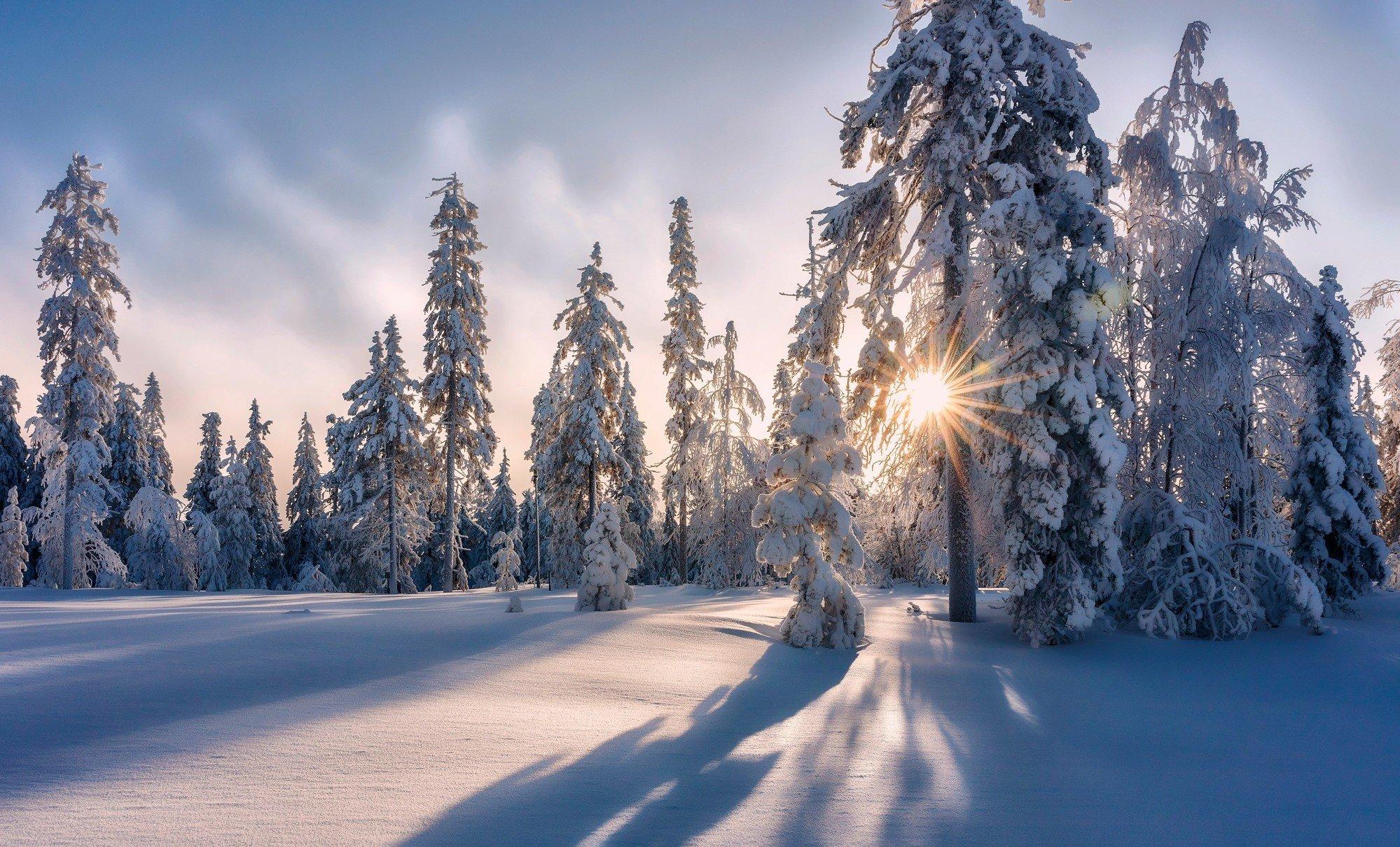 День зимнего солнцестояния: традиции, приметы и запреты