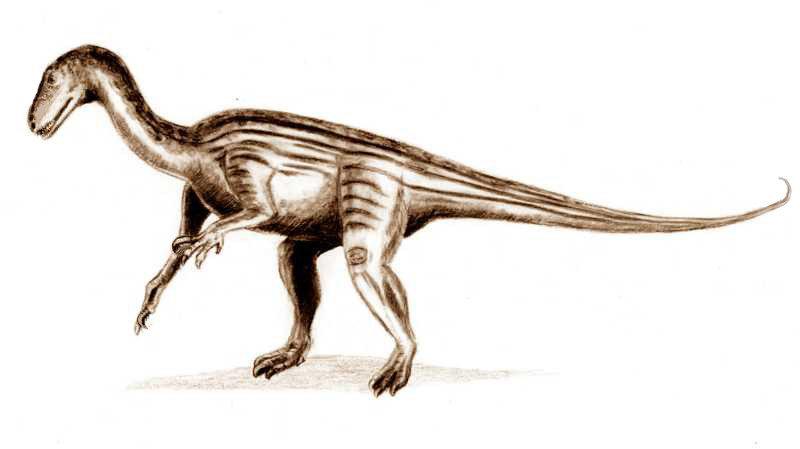 Воссоздан мозг динозавра
