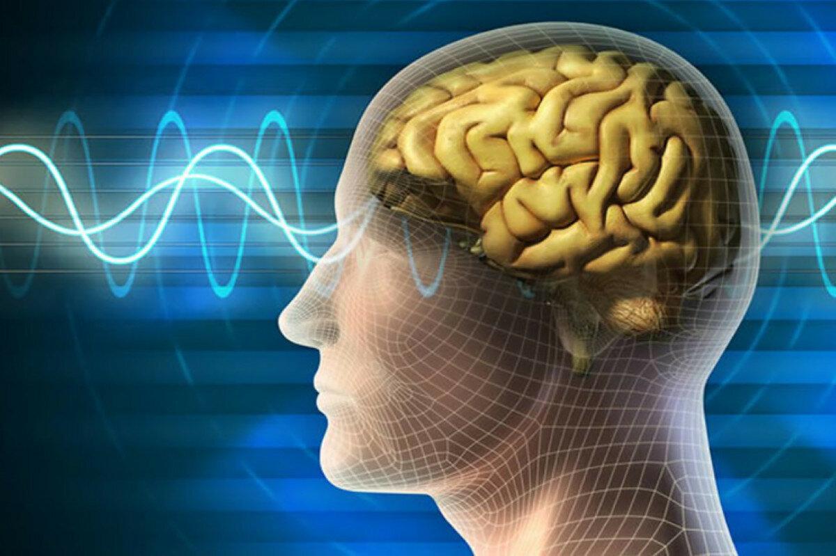 4 привычки которые гробят наш мозг