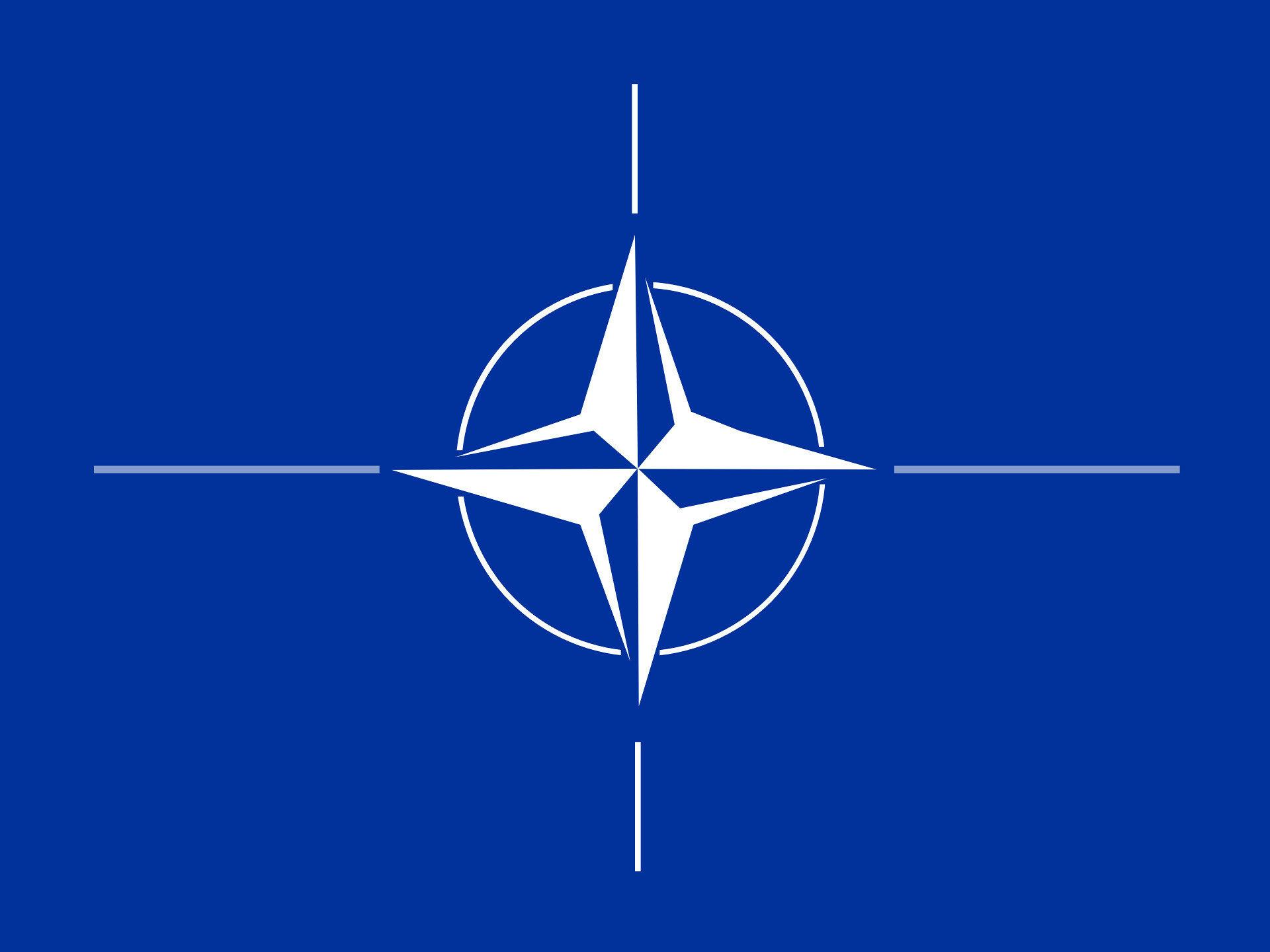 Еще одна страна предложит НАТО предоставить Украине ПДЧ