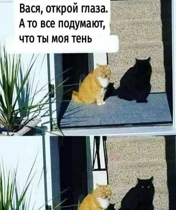 https://kurs.com.ua/uploads/monthly_2021_04/FB_IMG_1619596196607.jpg.d076837587ea24ee51daad5f5a30d4b0.jpg