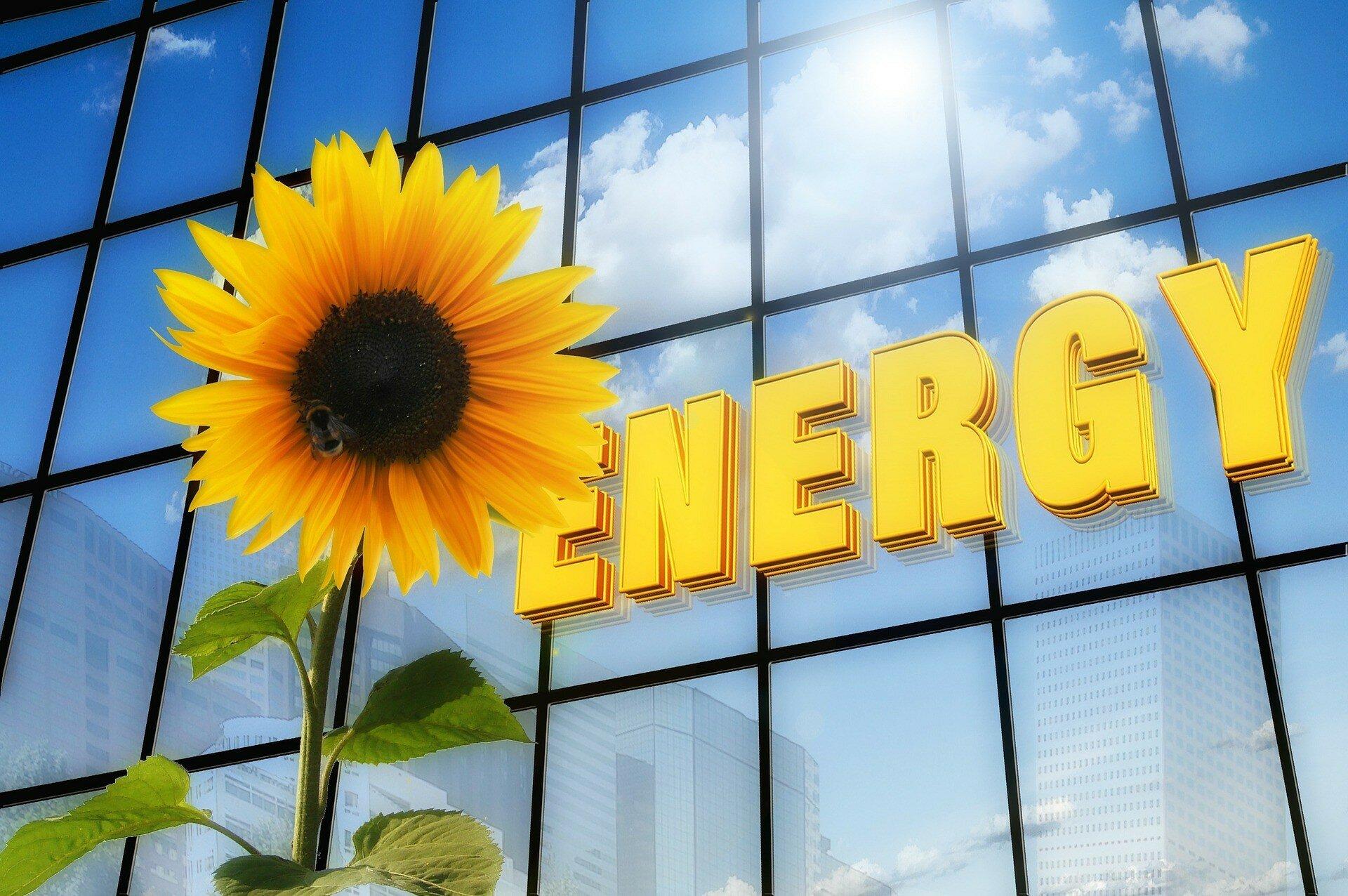 На должность министра энергетики рассматриваются 5 кандидатов, — инсайд