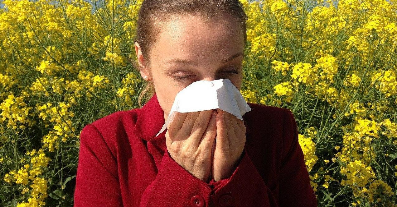 2 сезонных аллергена: узнайте какие и как с ними справиться