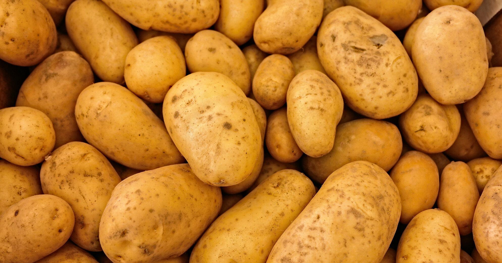 Названо 6 корисних властивостей картоплі для здоров'я