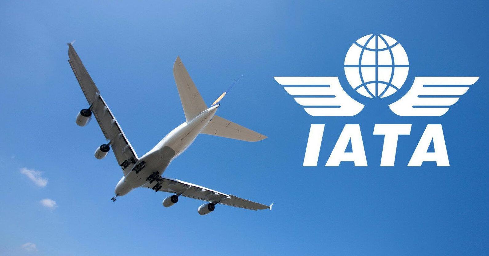 Самолетам будет непросто облетать Беларусь - глава IATA