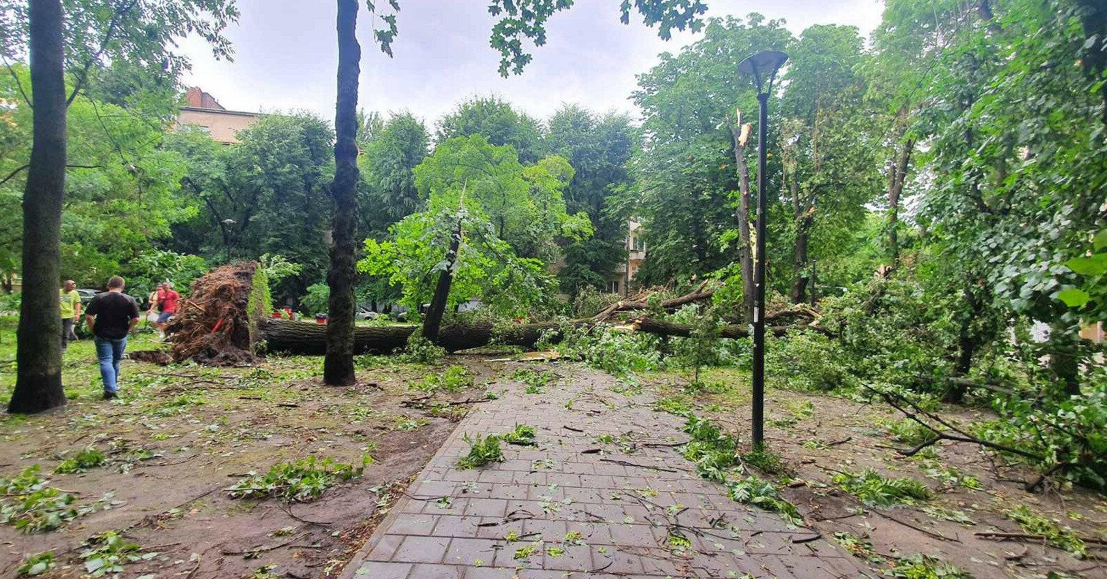 Ураган с мощным ливнем и градом снова накрыл Львов