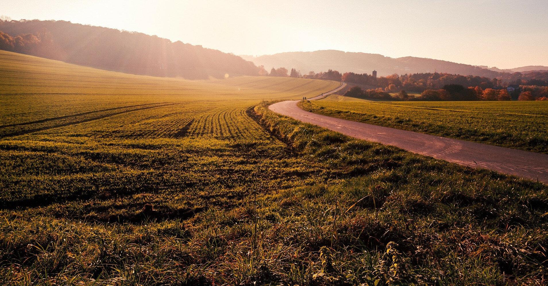 Цена гектара земли достигла 28 тыс. грн и будет расти