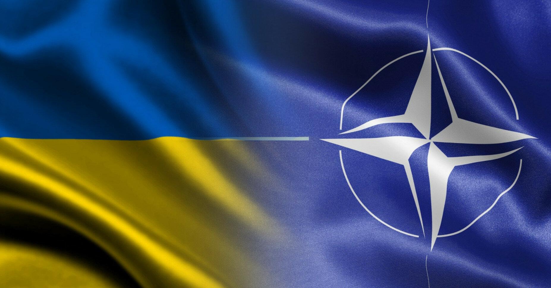 Почти половина украинцев считает НАТО союзником Украины - опрос