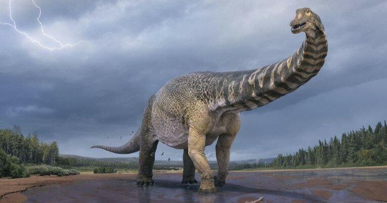 Ученые классифицировали новый вид динозавров-титанов