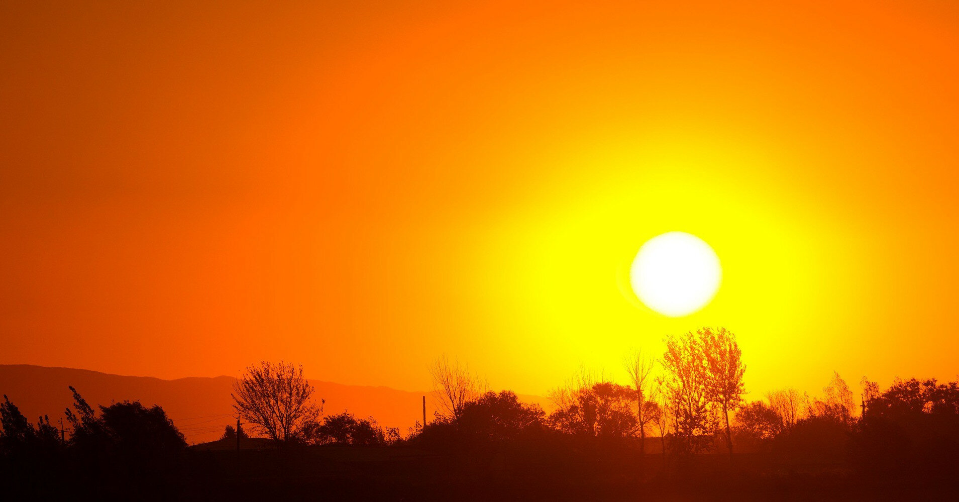 На Закарпатье зафиксировали рекордно высокую температуру воздуха