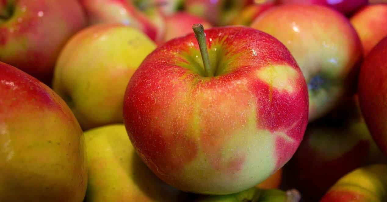 Цены на яблоки ниже прошлогодних в два раза