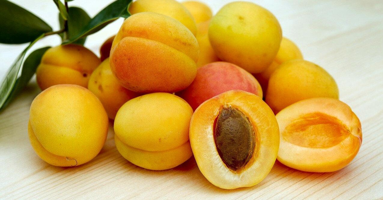 Польза и вред абрикоса для организма