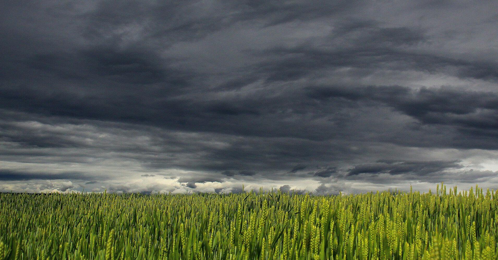Долгожданная прохлада: 22 июля по всей Украине прогнозируется похолодание