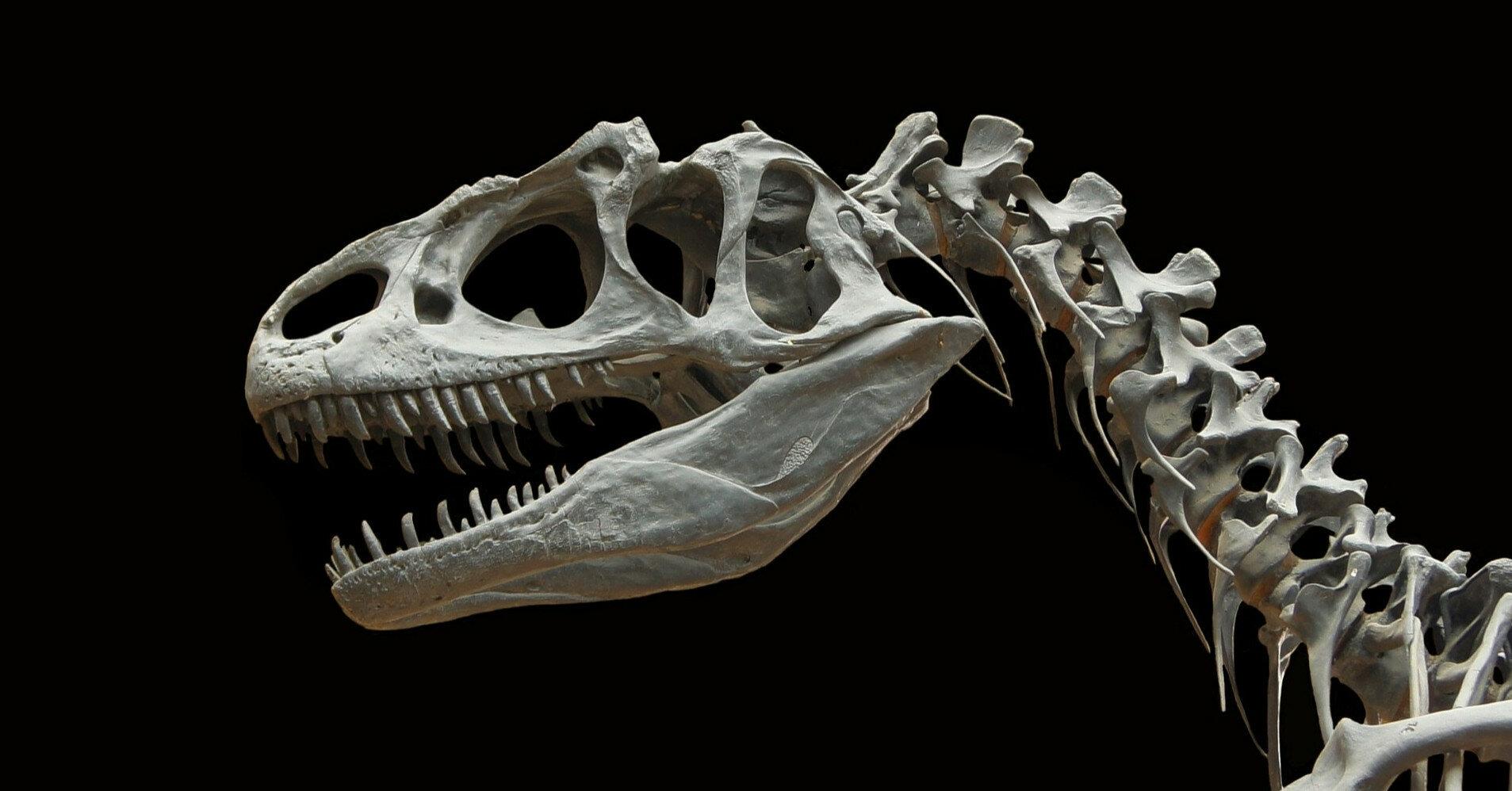 Ученые выяснили, что динозавры дышали по-разному