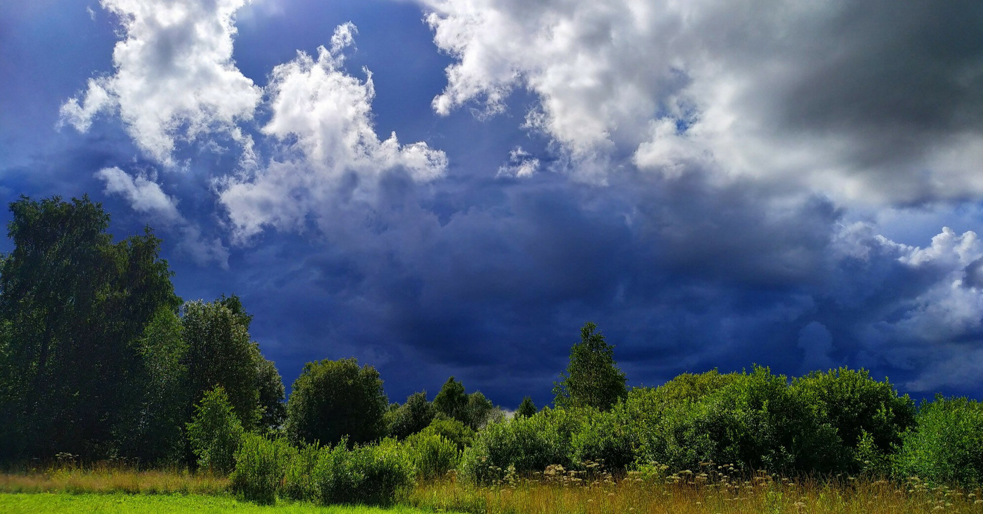 Синоптики дали прогноз на август