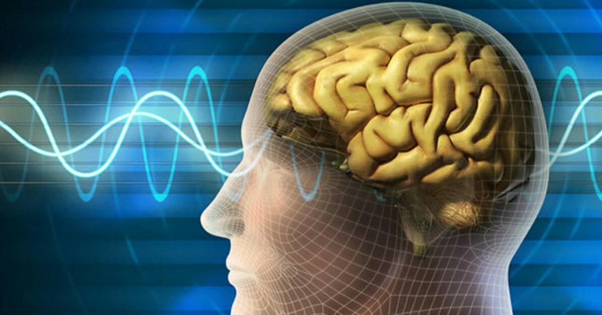 7 порад, як зберегти мозок здоровим до старості
