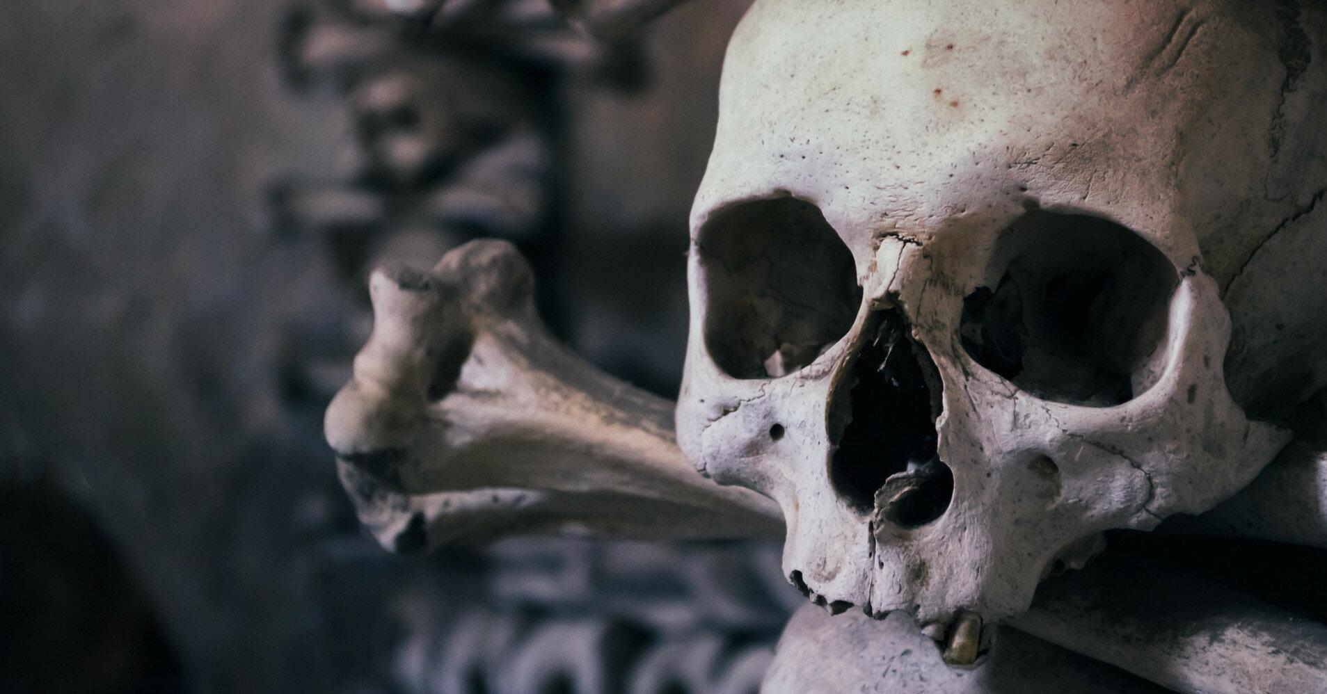 """Найден """"нулевой пациент"""" эпидемии чумы, который жил 5 тыс. лет назад"""