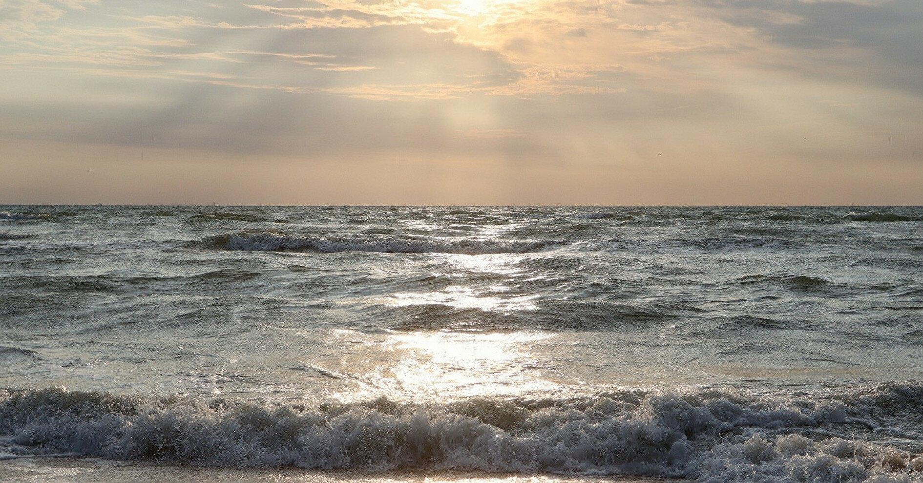Пляжи Бердянска после мощного шторма засыпало медузами