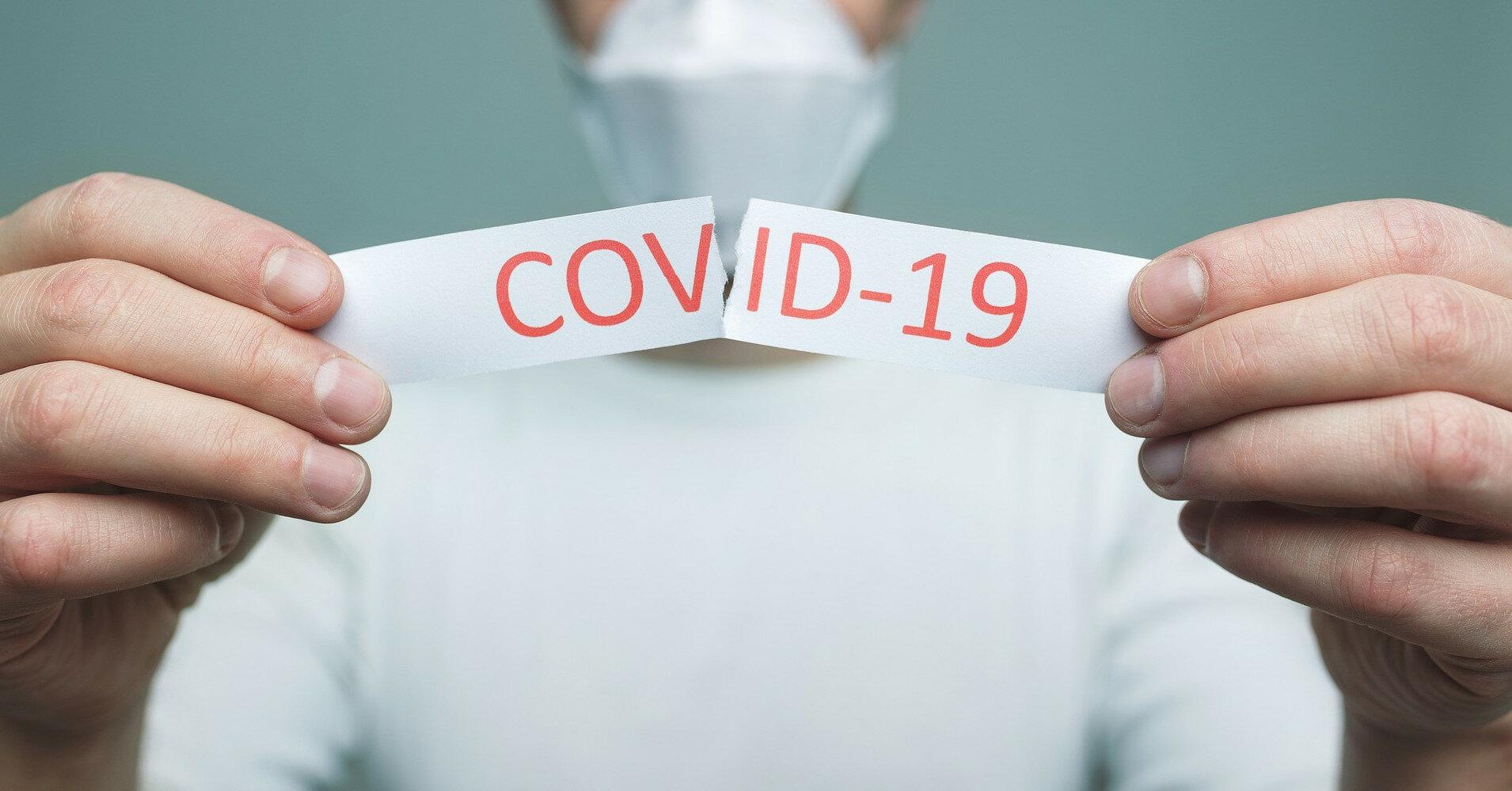 Экстракт полыни признали эффективным в борьбе с коронавирусом