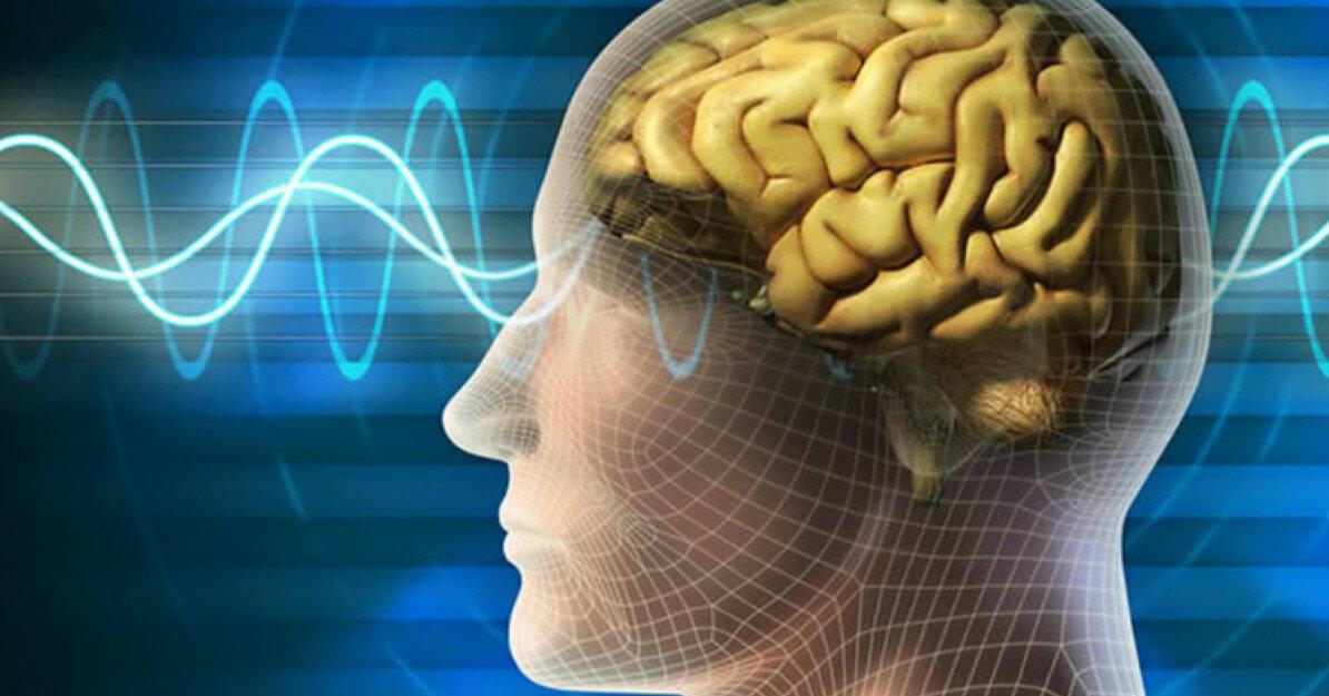 Разговаривать с самим собой полезно для мозгов