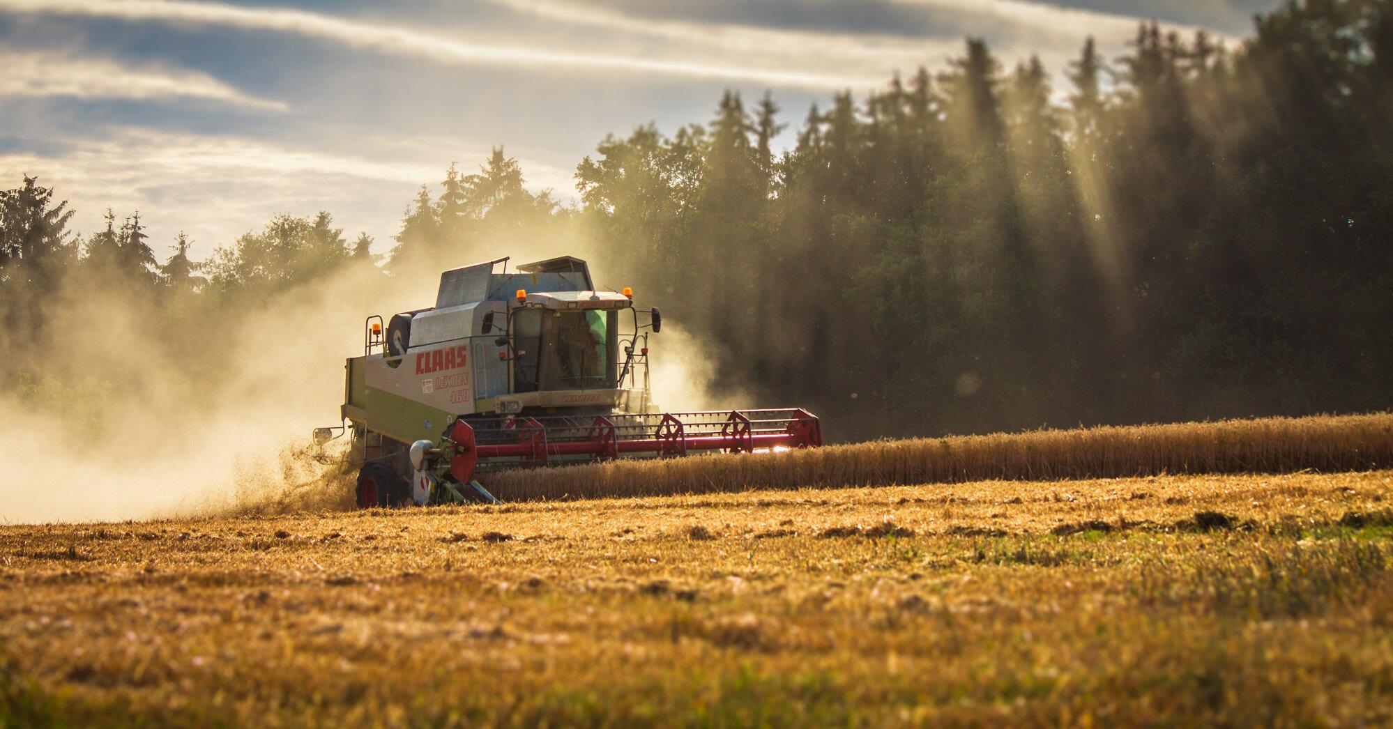 Урожай зерновых: аграрии идут на рекорд