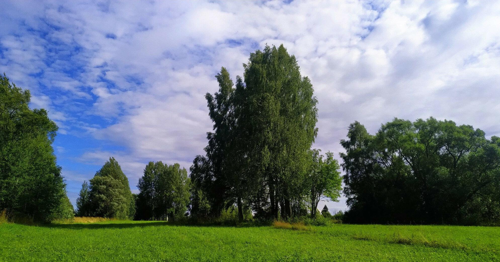 Дожди отступают: где по прогнозу будет облачно с прояснениями