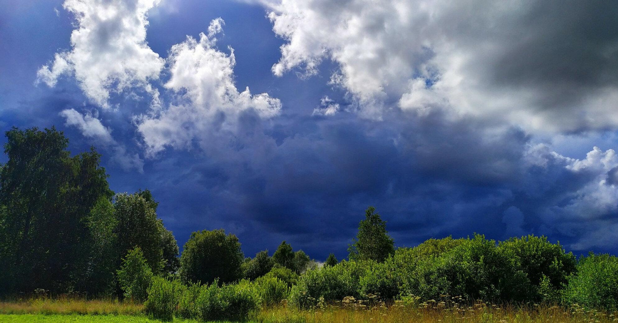 Пасмурно и все еще дождливо: прогноз погоды на 6 июля