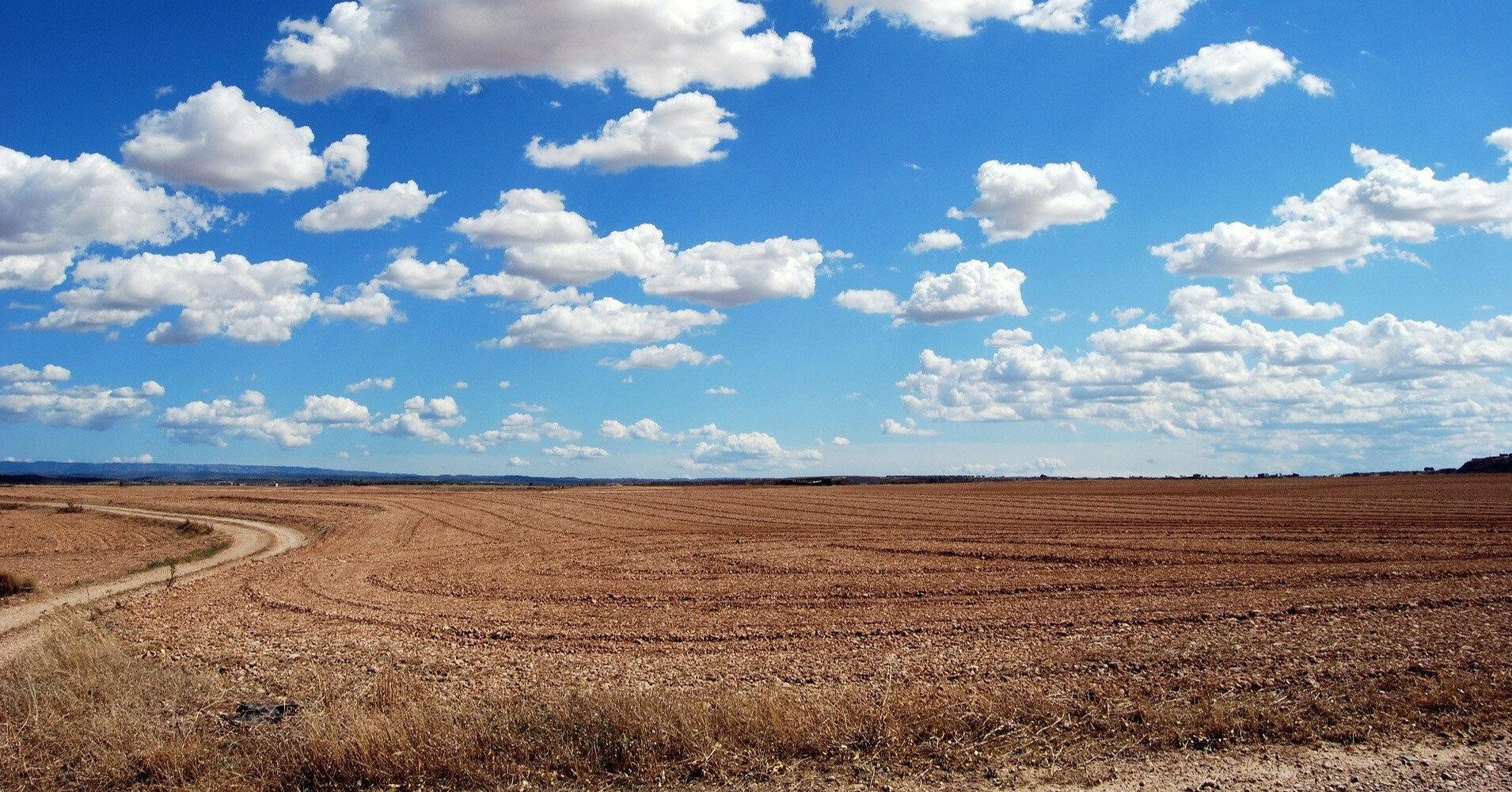Земля станет прибыльнее недвижимости и депозитов - эксперты