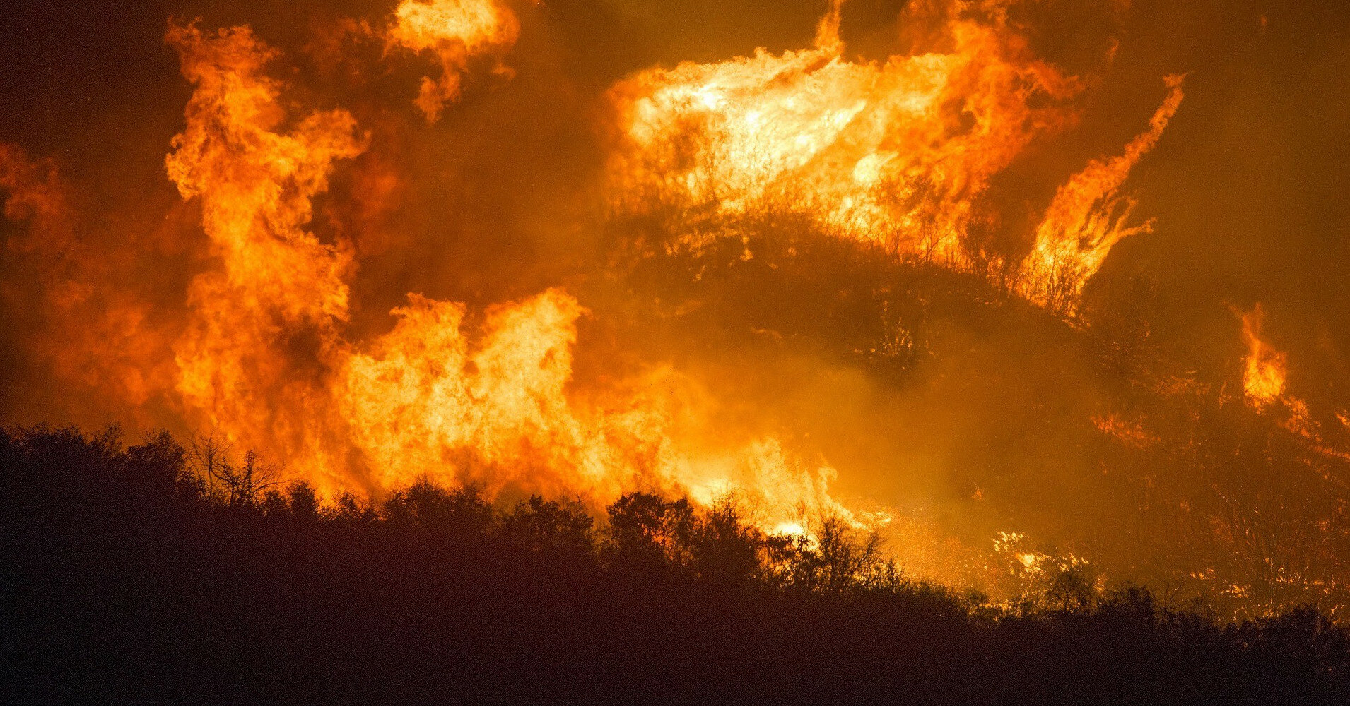 Лесные пожары в Турции: есть ли среди пострадавших украинцы