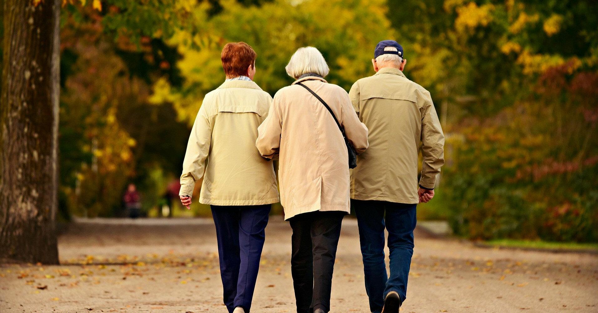 Как бесплатно оформить пенсию по почте: инструкция