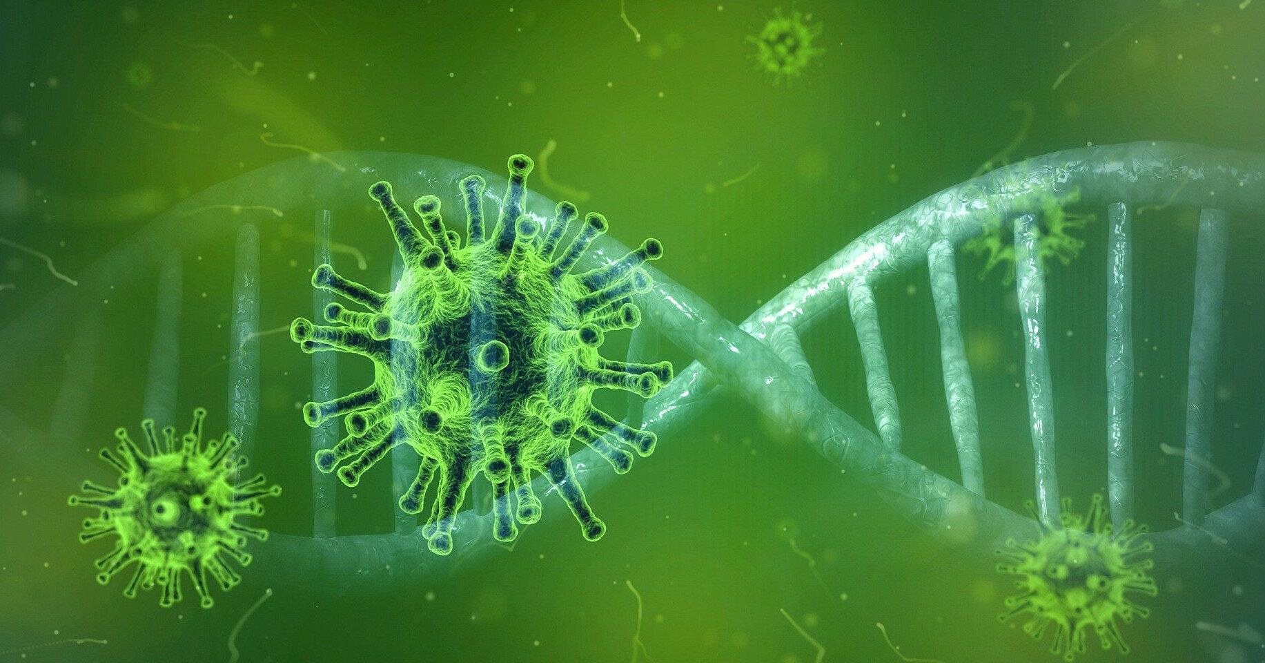 Выяснена скорость мутации коронавируса