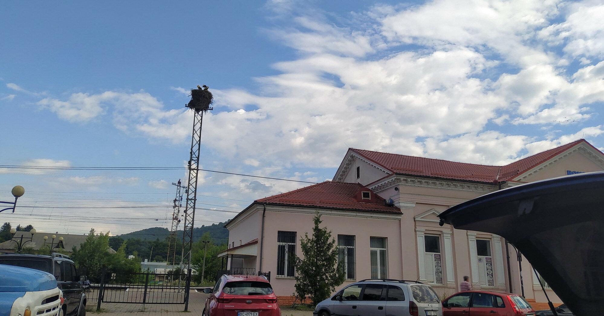 Часть Украины накроет 33-градусная жара