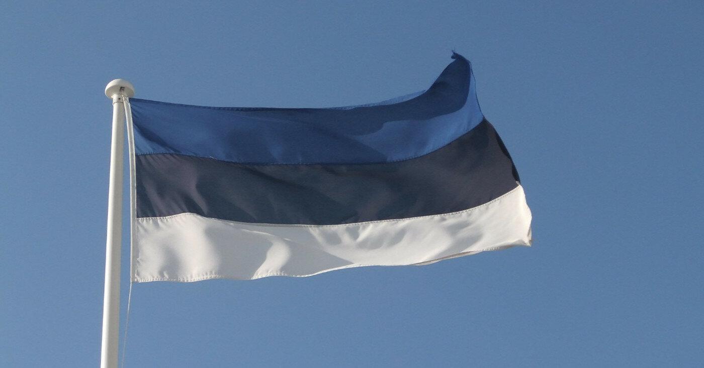 В Эстонии избрали нового президента