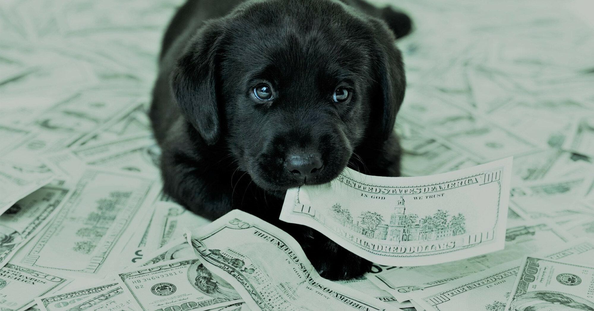 Курс валют: итоги пятницы