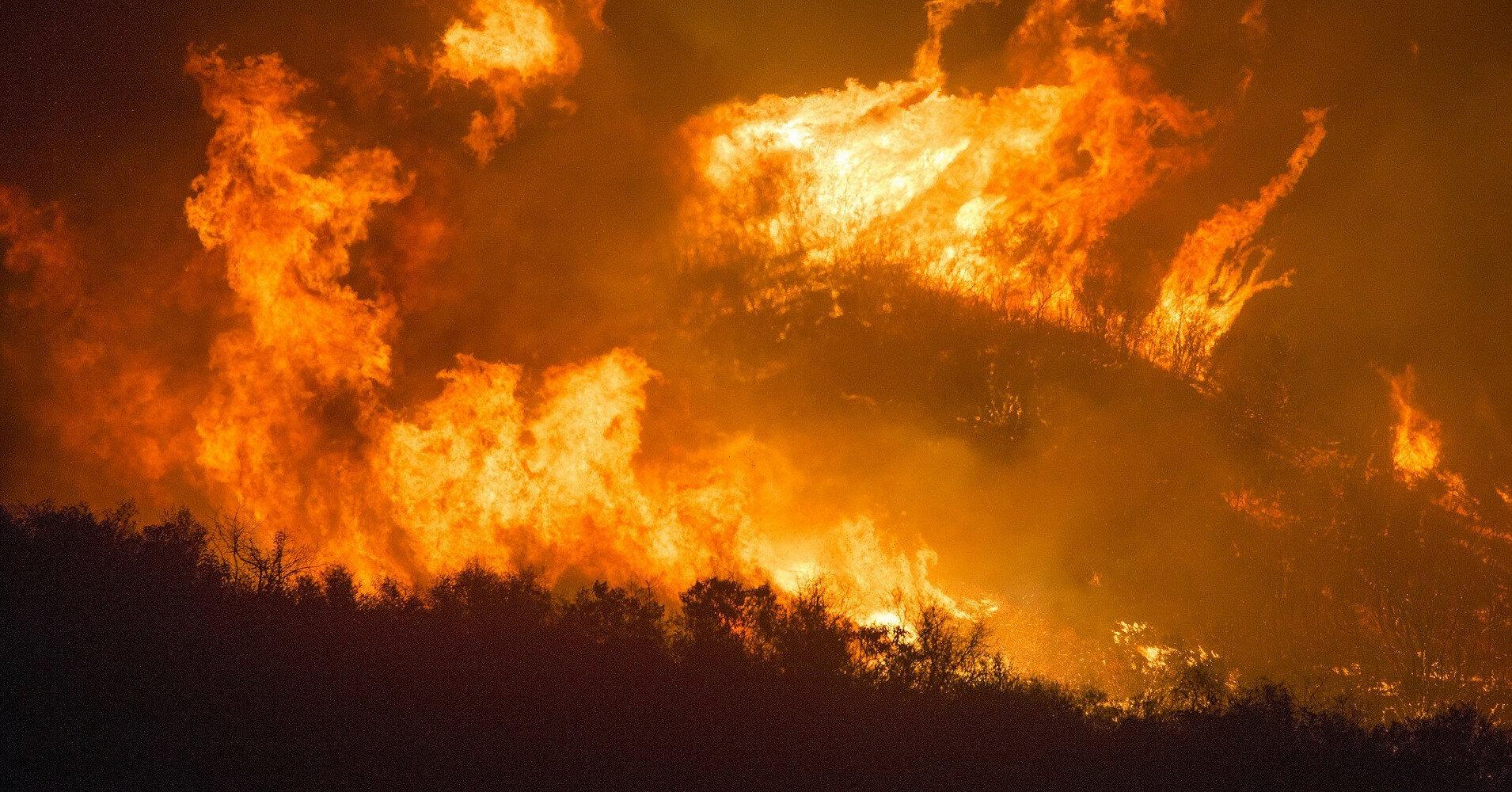 В Греции задержаны более 100 человек за поджоги лесов