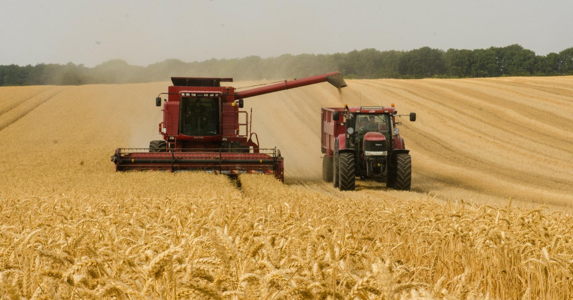 Шмыгаль пообещал рекордный урожай зерновых
