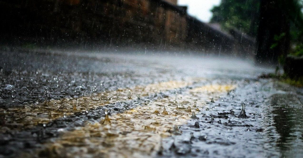 Дожди и сильный ветер: какая погода ожидается 6 августа