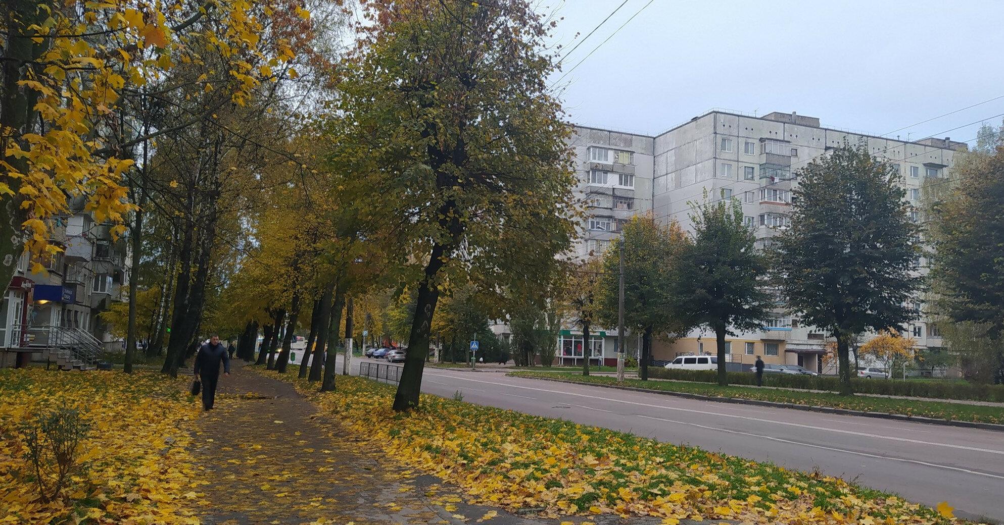 Аномальный сентябрь и морозы с октября: какой будет осень